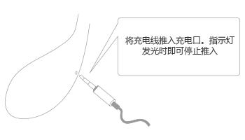 Lush 2nd Gen by Lovense charging port.